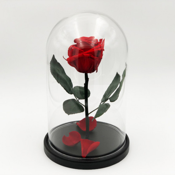 Роза в колбе красная